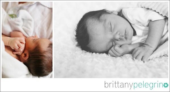 newborn-portrait-session